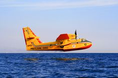 Canadair in action - null
