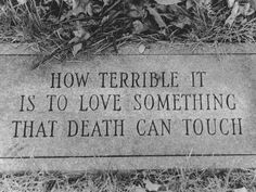 """""""How terrible it is to love something that death can touch."""""""