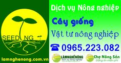 Làm Nghề Nông .com.vn ,Chợ Nông Sản,Cây Giống,Vật tư Nông Nghiệp