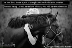 Love for a horse