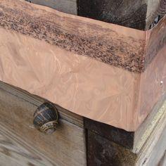 Copper foil as a snail barrier.
