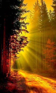 Landscape light road ..