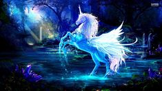 Wallpaper unicorn mythical creatures 56 ideas for 2019 Trendy Wallpaper, Tumblr Wallpaper, 3d Wallpaper, Wallpaper Backgrounds, Wallpapers, Animal Wallpaper, Pegasus, Belize, Unicorn Backgrounds