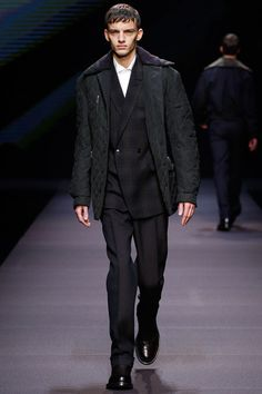 Ermenegildo Zegna | Fall 2014 Menswear Collection | Style.com