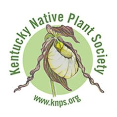 Kentucky Logo