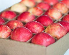 Honeycrisp Apples - FruitShare.com