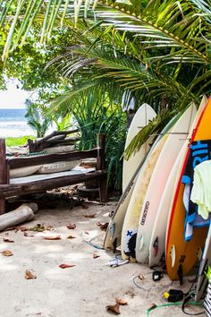 Time for a lesson. Latitude 10 Exclusive Beach Resort (Costa Rica) - Jetsetter