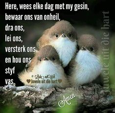 Prayer For My Children, Evening Greetings, Afrikaanse Quotes, Goeie Nag, Goeie More, Spiritual Life, Good Morning Quotes, True Words, Positive Thoughts