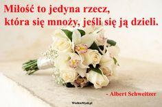 Więcej cytatów na... http://wielkiemysli.pl/t,123,albert_schweitzer.html