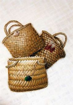 Facilitating improved achievement of Maori students in science Flax Weaving, Basket Weaving, Woven Baskets, Latest Science News, Polynesian Art, Maori Designs, Maori Art, Teacher Education, Weaving Techniques