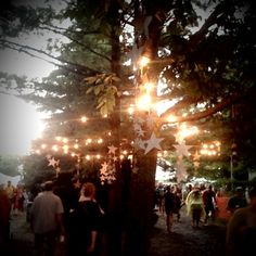 Sweet Hillside Festival Magic Tree