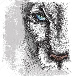 Esboço desenhado de mão de um leão olhando fixamente para a câmera
