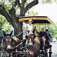 I took my husband and his parents on a horse drawn carriage tour once. I lived there most of my life and it was the first time I'd done it.  Beautiful tour.  Charleston's Top 5 City Tours