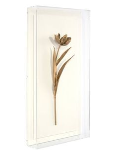 Golden Stem II Wall Art (Shadow Box)