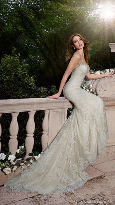 Moonlight Collection Spring 2016 Wedding Dresses   Wedding Inspirasi