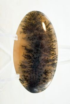 Dendritic Agate Cabochon cab1535 Dendritic Agate, Rock Collection, Agates, Crown Jewels, Moss Agate, Marcasite, Fossils, High Gloss, Minerals