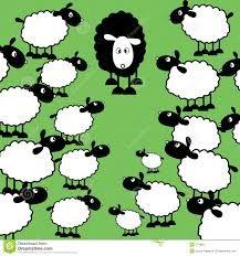 Het zwarte schaap zijn