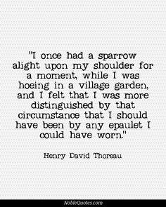 Henry David Thoreau Quotes   http://noblequotes.com/