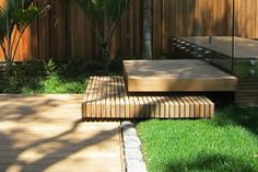 landscaping with nz native plants - Google Search