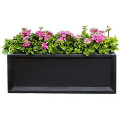Denbigh Window Box Onyx Black Outdoor Urns Planters & Jardinieres ($129) ❤ liked on Polyvore featuring home, outdoors, outdoor decor, black, outdoor, modern outdoor planters, outdoor urn planters, outdoor garden decor, modern planters and outside planters