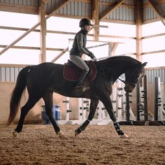 Do you believe that foundation is foundation is foundation? In my opinion, the relationship that we build with our horse undersaddle &… So Much Love, I Got This, My Horse, Horses, Good Friday, How Do I Get, Pumping, Equestrian, Conversation