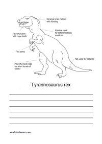 Stegosaurus Fact Sheet  School  Dinosaurs