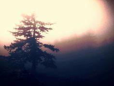 Fog at the summit