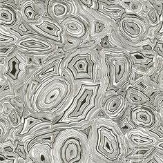 The most amazing wall paper by Cole & Son Fornasetti (Malachite Wallpaper in Black / White)