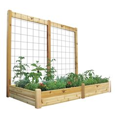 48-inch x 95-inch x 80-inch x 10-inch D Raised Garden Bed with Trellis Kit