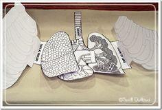 Retallable aparell respiratori