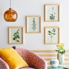 Herb Wood Frame, Set of 4 by Drew Barrymore Flower Home, Gorgeous Frame set to use in the kitchen or living room. Kitchen Lighting Design, Kitchen Lighting Fixtures, Light Fixtures, Fixer Upper, Frames On Wall, Framed Wall Art, Framed Prints, Wood Frames, Layout Design