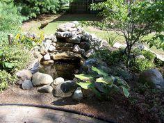 diy fish pond