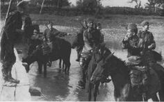 WWII. - 1941-45. - Croatia/NDH - Waffen SS Handschar and horses