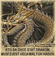 Kto sa chce stať drakom, musí zjesť veľa malých hadov. Čínske príslovie