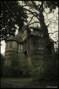 villa...I wish to have this lovely creepy place!!