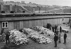 This is a picture of the bodies that were piled at the Mauthausen Concentration Camp in May 1945. This took place during the holocaust and was a very dark point in history.  Thousands of men, women, and children were killed in camps such as these.