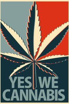ArtEdge Yes We Cannabis Marijuana Poster Print, x Marijuana Art, Medical Cannabis, Cannabis Oil, Cannabis Edibles, Stoner Art, Weed Art, Psy Art, Puff And Pass, Painting Art