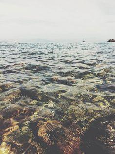 365 days August  #365daysaugust #sea #beach #summer #greece #sealife