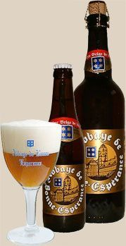 Abbaye de Bonne-Espérance, Brewery Lefebvre, Quenast (Belgium) 7.8% 8/10