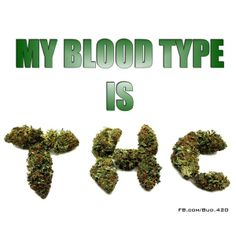 My Blood Type Is THC - Marijuana Memes