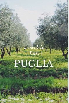 Puglia story by Jet