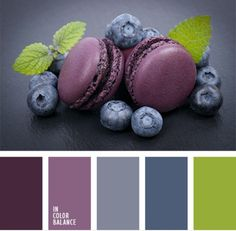 Image result for blueberry color palette