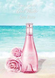 Парфюмът Cool Water Sea Rose за жени от Davidoff е лансиран през 2013 година и е класифициран като флорално ухание. Уханните нотки включват връхни нотки на круша, сърдечни нотки на божур и базови нотки на мускус. Ароматната композиция на Davidoff Cool Water Sea Rose е дело на Орелин Гишар (Aurelien Guichard).
