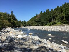 ベストシーズンのフィールドの写真を観るのは、オフシーズンの楽しみの一つである。しかし最近では、渓相の急激な変化を再確認する行為でもある。  この対岸の平らな川原は中州になっており、かつて結構な小山があった。  また手前の流れもずっと細く、ニーブーツで簡単に渡れた。  しかし、昨年は何度訪れても中州に渡れる事は無かった。