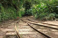 Monteverde train tour tracks   - Costa Rica