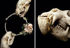 Jewelry by Mitchell Feinberg