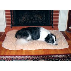 "$56.99-$69.99 SnooZZy Cozy Comforter Dog Bed in Natural Size: Large (41"" x 26"") - 2407-SNZ5000NTL Size: Large (41"" x 26"")  Features: -Cozy comforter dog bed. -Bumper and bed in one. -Pets love them in crates, carriers, dog houses, cars, SUV's or anywhere. -Comfortable pet bed for dogs and cats. -Fits most standard sized wire crates. -Use alone or in a crate. -No zippers, snaps or buttons to catch ..."