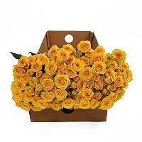 $83.88 Spray Roses - Yellow - 100 Stems - Sam's Club