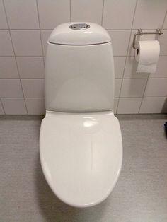 dual flush toilet bidets
