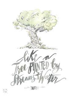 Psalm 1 : 3 by truecotton